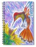 Phoenix Fire Hummingbird Spiral Notebook