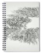 Phoenix Rising Sketch Spiral Notebook