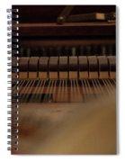 Piano Guts Spiral Notebook