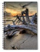 Pic Driftwood Spiral Notebook