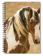 Picasso Of Sand Wash Basin Spiral Notebook
