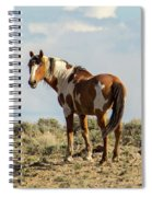 Picasso On The Horizon Spiral Notebook