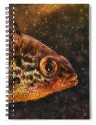 Pices In Aquarium Spiral Notebook
