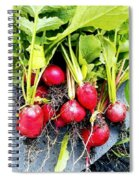 Picked Just For You Spiral Notebook