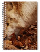 Picking Up The Scent Spiral Notebook