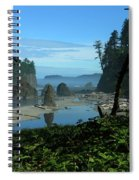 Picturesque Ruby Beach View Spiral Notebook
