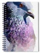 Pidgeon Spiral Notebook