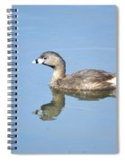 Pied-billed Grebe 2 Spiral Notebook