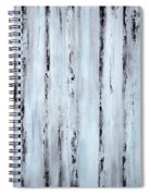 Pier Planks Spiral Notebook