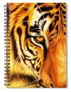 Piercing Glance Spiral Notebook
