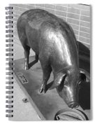 Pig Sculpture Grand Junction Co Spiral Notebook