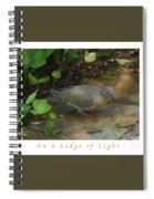 Pigeon Poster Spiral Notebook
