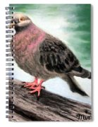 Pigeon Toes Spiral Notebook