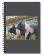 Piggyback Spiral Notebook