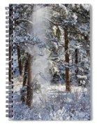 Pike National Forest Snowstorm Spiral Notebook