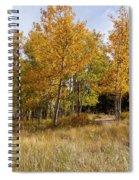 Pikes Peak Splendor Spiral Notebook