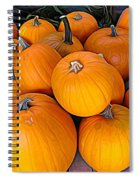 Pile Of Pumpkins For Sale Expressionist Effect Spiral Notebook