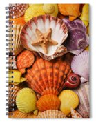 Pile Of Seashells Spiral Notebook