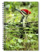 Pileated Woodpecker On The Ground No. 1 Spiral Notebook