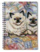 Pillow Mates Spiral Notebook