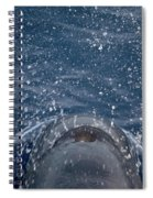 Pilot Whale 7 The Breath Spiral Notebook