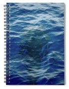 Pilot Whale 9 The Mermaid  Spiral Notebook