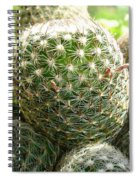 Pincushion Cactus Spiral Notebook