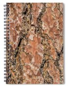 Pine Bark Spiral Notebook