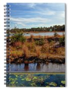 Pine Barrens Bog In New Jersey Spiral Notebook