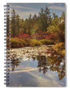 Pine Barrens New Jersey Whitesbog Nj Spiral Notebook