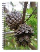Pine Cones Spiral Notebook