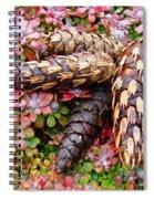 Pine Cones Art Print Botanical Garden Baslee Troutman Spiral Notebook