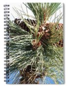 Pine Cones Over Lake Tahoe Spiral Notebook