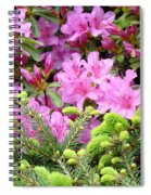 Pine Conifer Pink Azaleas 30 Summer Azalea Flowers Giclee Art Prints Baslee Troutman Spiral Notebook