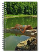 Pine Creek Afternoon Spiral Notebook