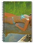 Pine Creek Summer Afternoon Spiral Notebook