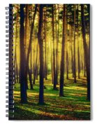 Pine Forest In La Boca Del Asno-segovia-spain Spiral Notebook