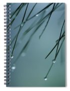 Pine Needle Raindrops Spiral Notebook