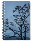 Pine Tree Antigua Guatemala Spiral Notebook