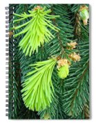 Pine Tree Branches Art Prints Conifer Forest Baslee Troutman Spiral Notebook