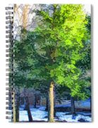Pine Tree Forest Spiral Notebook