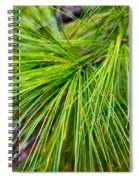Pine Tree Needles Spiral Notebook