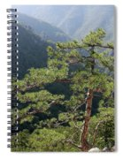 Pine Tree On Mountain Landscape Spiral Notebook