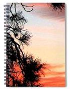 Pine Tree Silhouette Spiral Notebook
