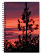 Pine Tree Sunrise Spiral Notebook