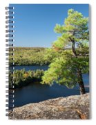 Pine Tree With A View Spiral Notebook
