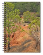 Pine Trees And Forest Spiral Notebook