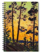 Pine Trees At Sunset Spiral Notebook
