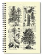 Pine Trees Study Black And White  Spiral Notebook