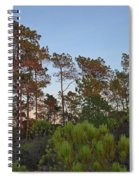 Pine Trees Waiting For Twilight Spiral Notebook